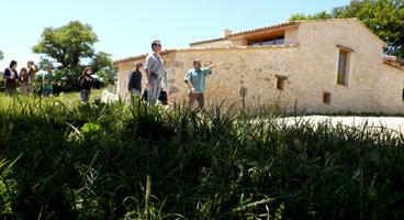 journée découverte permaculture