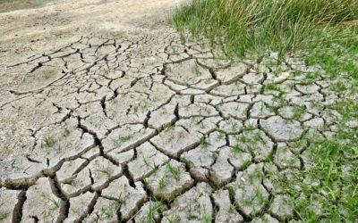 Effondrement et réchauffement climatique