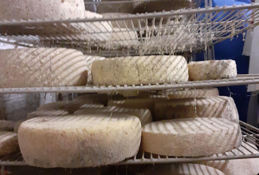 Fabrication de fromage et de beurre