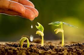 Agroécologie et résilience