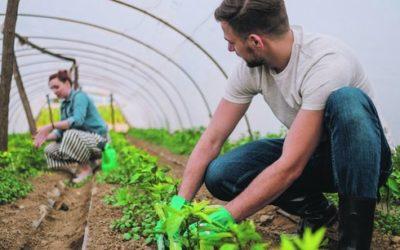 Valeurs de l'agroécologie